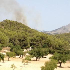 Waldbrand in Son Serra de Marina