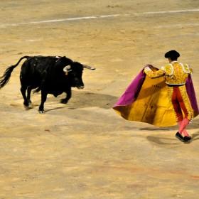 Letzter Stierkampf in Palma de Mallorca