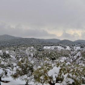 Kälteeinbruch am Wochenende auf Mallorca