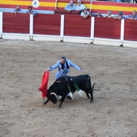 Letzter Stierkampf auf Mallorca – Mallorquiner kämpfen für ihre Tradition