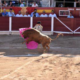 Stierkampf in Muro nahezu ausverkauft