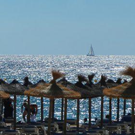 Ausnahmesommer 2016: Urlaubsidylle auf Mallorca gestört