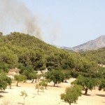 Waldbrand Mallorca